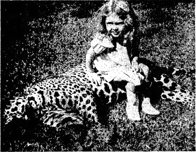 Last Jaguar Placeholder Image