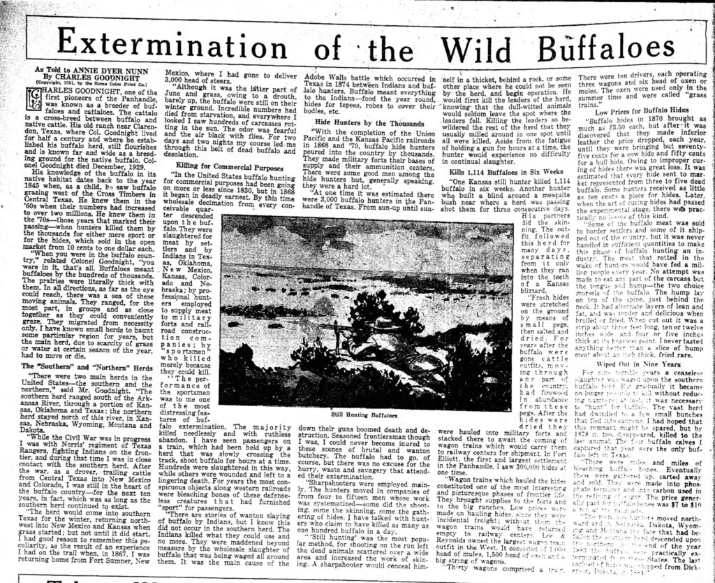 extermination of wild buffaloes bison article