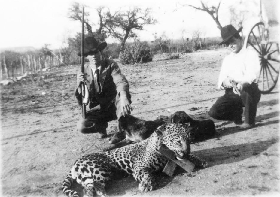 London Texas Jaguar 1909